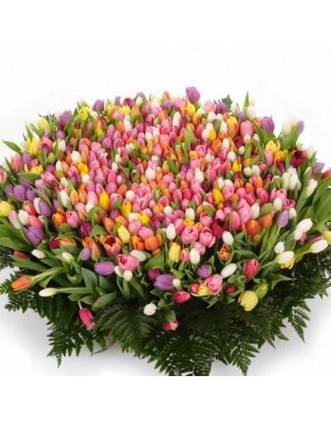Доставка цветов сарань саженцы розы купить кривой рог